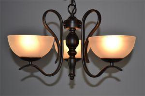 Aparência elegante 3 lustre de Luz