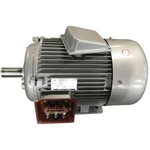 Электрические двигатели (мотор серии y)