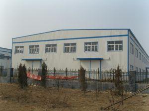 Magazzino prefabbricato della costruzione chiara d'acciaio del blocco per grafici (KXD-SSW1569)