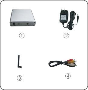 2.4GHz Wireless Mini Cámara de inspección del tubo de desagüe con mini receptor AV (visión nocturna, de 5 metros de la vista)