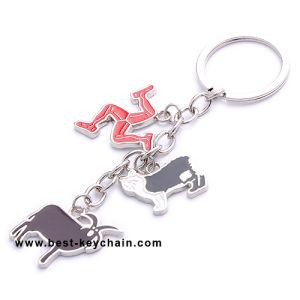 금속 승진 색깔 충분히 개인화된 주문 열쇠 고리 (BK11843-)