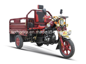 Sepcialデザイン貨物三輪車または贅沢3の車輪のオートバイの/Threeの車輪Trike