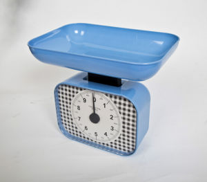 scala di plastica della cucina della molla meccanica 10kg