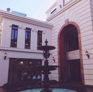 Marmeren Fontein van de Eigenschap van het Water van het Beeldhouwwerk van de Steen van het Hotel van de luxe de Snijdende voor het Park van de Stad