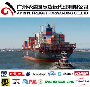 Las mejores tarifas de fletes marítimos Shenzhen a Pakistán