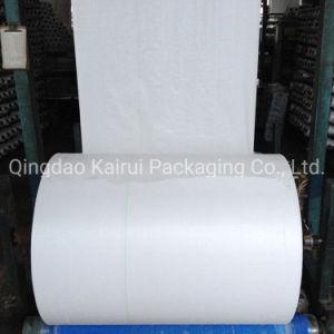 Haute résistance à la traction en PP imprimé tissu tissé