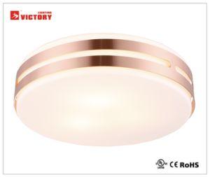 LEDの屋内のための現代簡単な表面の台紙の天井ランプ