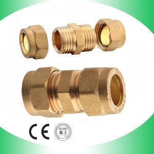 Accoppiamento maschio (di rame) d'ottone per il rifornimento idrico