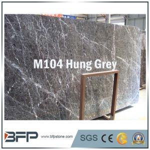 M104 ha appeso le lastre di marmo grige per le mattonelle di pavimento, scala, controsoffitto