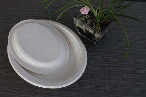 La brillance de la plaque ovale de crête biodégradable les plaques de bagasse de canne à sucre compostables