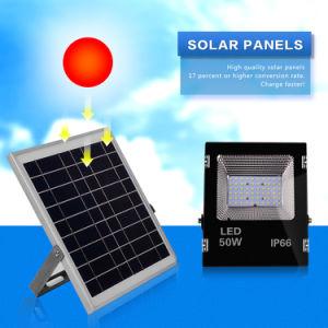リモート・コントロールの50ワットの極度の明るい太陽キャンプライト