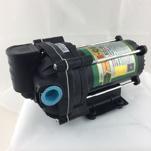 Bomba de entrega 1.3 gpm 4 secções diafragma RV05
