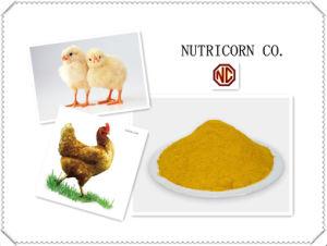 Nutricorn Glutenose aditivo em alimentos para frangos