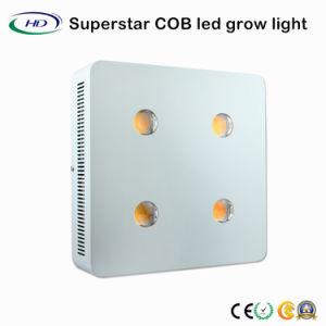 CREE COB 4*200W de luz LED de crecer las plantas para la casa verde