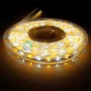 Striscia 12V, di alta qualità 60LEDs/M SMD5050 RGBW LED CC 24V con IEC/En62471