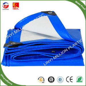 Tarps Pesado com Tratamento UV / de HDPE Azul / Branco PE oleados de veículo automóvel / Tampa / Tenda / Barco fábrica na China