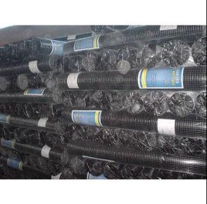 熱い浸された電流を通された溶接された金網(CE&SGS)