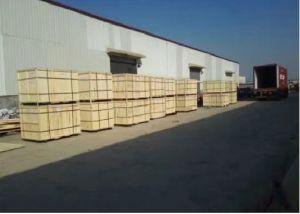Laser del CO2 che incide la strumentazione di legno acrilica di taglio