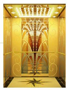 250kg-450kg si dirigono l'elevatore del passeggero dell'elevatore con la scuderia ed il funzionamento di sicurezza