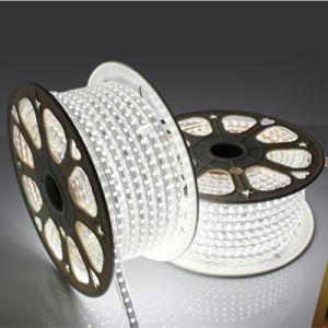 5050 striscia flessibile ad alta tensione di 60LED/M 220V 22W LED