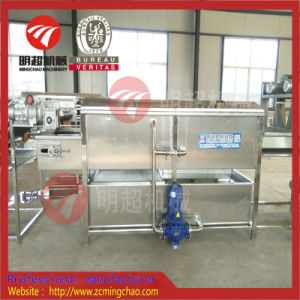 Fruits Légumes//nettoyage de la machine à laver à usage industriel/lave-glace
