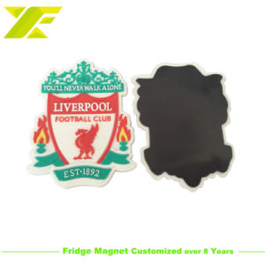 Le tourisme en plastique souple personnalisée en usine Fridge Magnet pour cadeau souvenir (FM10-C)