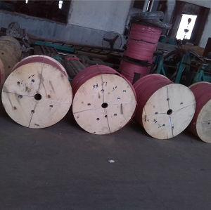 高品質のSU 316のステンレス鋼のコイルの管