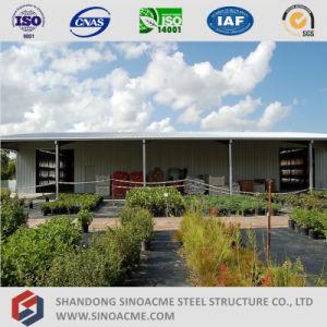 Sinoacme сегменте панельного домостроения стали пролить структуры