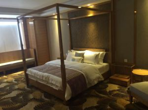 Mobilia della camera da letto dell\'hotel di stile dell\'Asia Sud ...