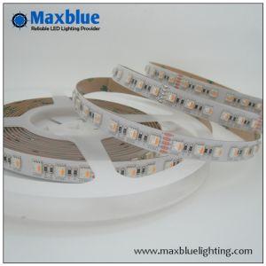 DC24V 300SMD 5050 RGBW in Un LED Strip Light