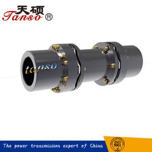 중국 공급자 Taf 두 배 유연한 디스크 연결