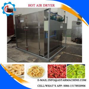 時間を計られ、温度の熱気のフルーツ野菜の脱水機の食糧乾燥のドライヤー機械を調節できる