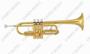 Trombeta chave de C (básico) - CTR-245L