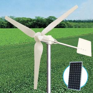 1000W &Generador de turbina de viento solar