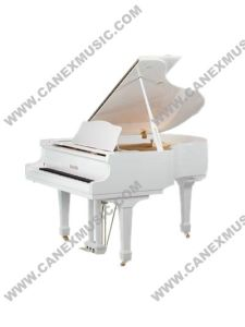 Teclado / Piano / Grand Piano (GP148)
