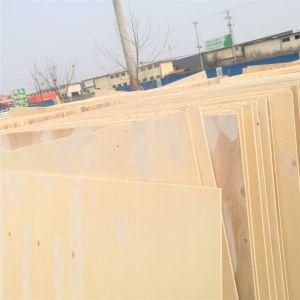 Möbel-Pappel-Furnierholz des Kleber-E1
