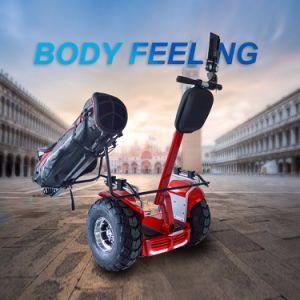 道の倍電池72V 4000Wの電気ゴルフスクーターを離れたEcorider