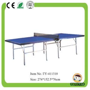 국제 기준 성숙한 실내 탁구 (TY-10907)
