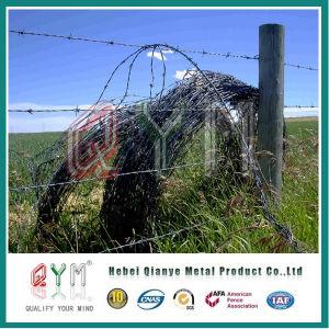 Rete fissa galvanizzata dell'azienda agricola del filo del rullo del filo