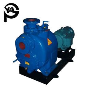 Moteur électrique à l'horizontale de fin de la pompe centrifuge d'aspiration des eaux usées