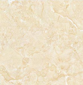 De nieuwe Ceramische Tegel van de Muur van de Tegel van de Vloer in 1000X1000mm (YQ10096)