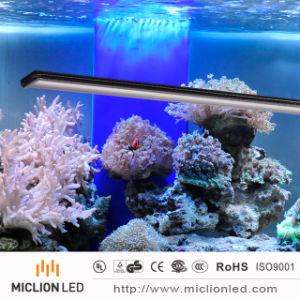 Aluminio IP67 18W+PC resistente al agua del acuario personalizada LED LUZ