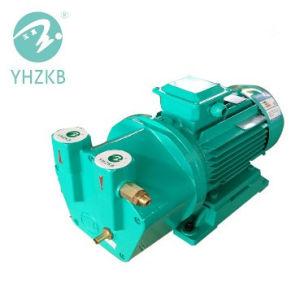 Sk-0,5 Líquido/Anel de água da bomba de vácuo para Indústria Food-Related