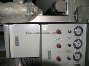 Aperte o cinto de segurança da máquina para resíduos de cana-de desidratação de lamas