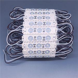 La Cina AC110V impermeabilizza la pubblicità del modulo dell'iniezione di /Backlight LED del Sidelight della casella