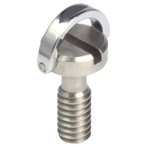 Acero inoxidable 304 / 316 tornillos cautivos con anillo D de la cámara
