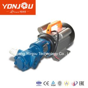 작은 마이크로 소형 휴대용 기어 기름 펌프