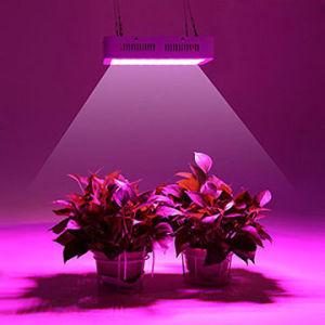Ventilador de 300W LED de alta potencia de luz crecer para invernadero