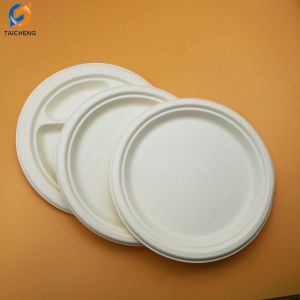 100 % de la plaque de la bagasse de canne à sucre Environment-Friendly biodégradable
