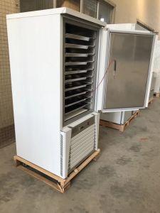 10 Frigideiras Blast freezer para restaurante
